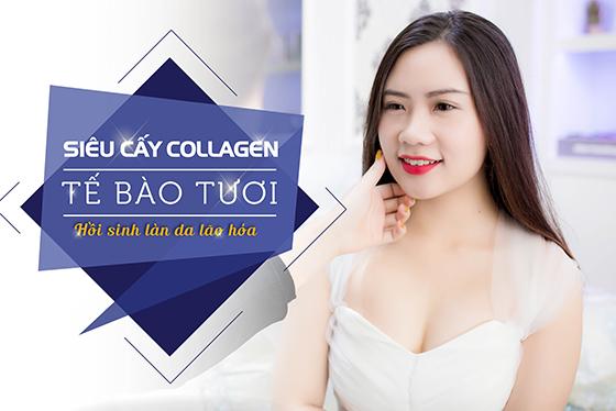 Siêu cấy Collagen tươi - giải pháp tối ưu giúp phụ nữ 25+ kiến tạo làn da không tuổi 1