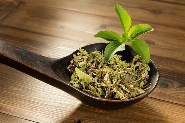 Uống lá cỏ ngọt giảm cân hiệu quả