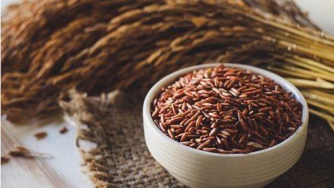 cháo gạo nứt giảm cân tốt cho sức khỏe