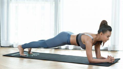 bài tập plank giảm mỡ bắp tay