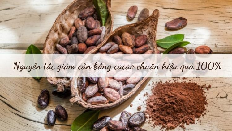 Giảm cân bằng cacao thế nào cho hiệu quả?