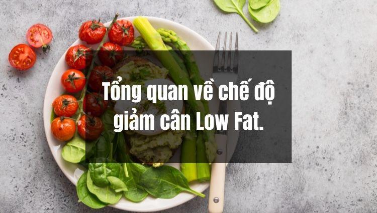 Bạn đã biết gì về chế độ giảm cân Low fat?
