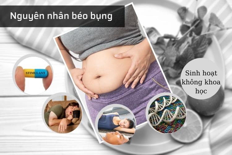Nguyên nhân dễ tạo điều kiện cho mỡ bụng xuất hiện