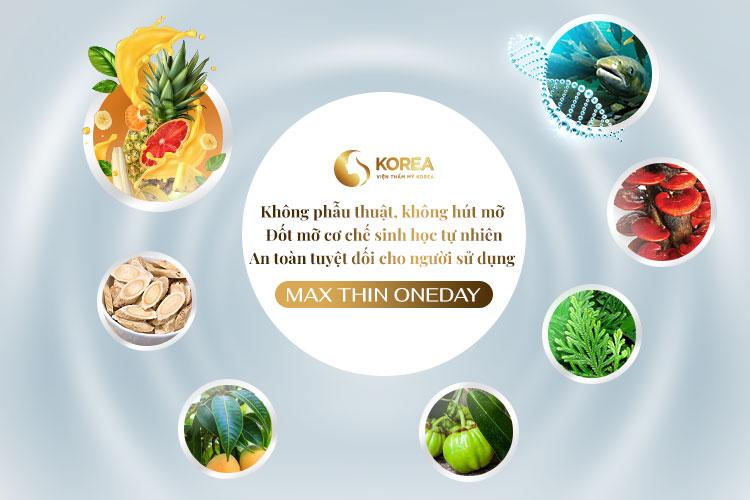 Thành phần sử dụng trong tinh chất Max Thin Oneday đều chủ yếu từ nguyên liệu và thảo dược tự nhiên