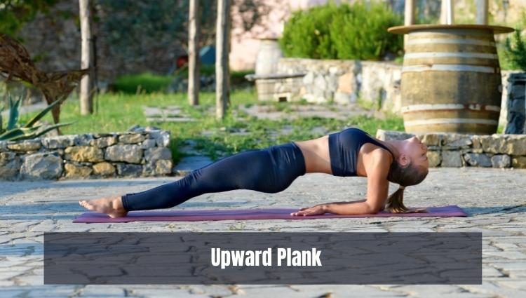 Các bài tập thể dục giảm mỡ bụng hiệu quả: Upward Plank