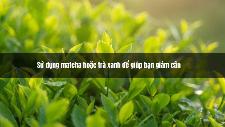 Sử dụng matcha hoặc trà xanh để giúp bạn giảm cân