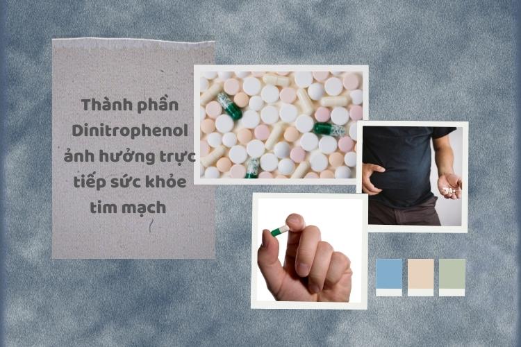 Tương tự như 2 loại thuốc trên Dinitrophenol cũng tác động xấu tới tim mạch