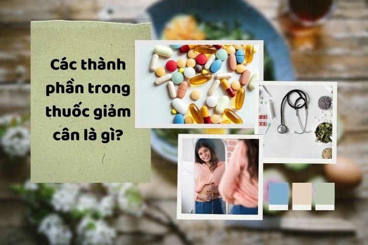 Các thành phần trong thuốc giảm cân là gì?