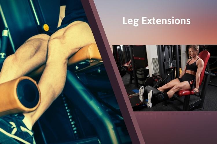 Bài tập giảm mỡ đùi cực hiệu quả trong 1 tuần với Leg Extensions