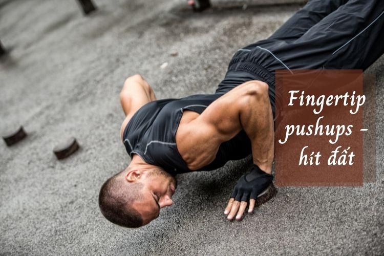 Bài tập Fingertip pushups